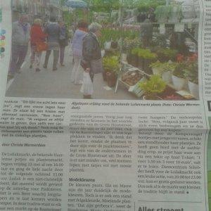 Haarlem Luilakmarkt