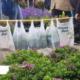 Blumen- und Gartenmarkt Herten